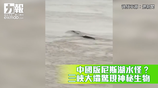 三峽大壩驚現神秘生物