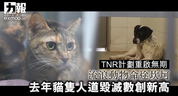 TNR計劃重啟無期